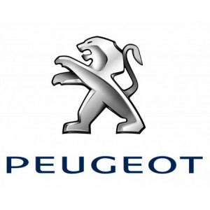 Peugeot tolóajtó görgő